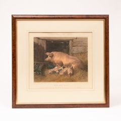 Fores's Series of The Mothers, Plate 5 Sow and Pigs